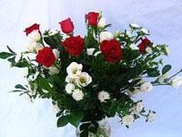 משלוחי פרחים בחולון